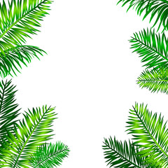 Tropical frame with palm leaves and space for your text. Blue sky background. Vector tropical design.