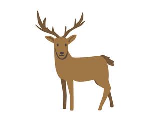 Deer, raindeer. Flat vector illustration. Isolated on white background
