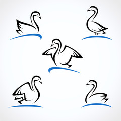 Swan set. Collection label and icons. Vector