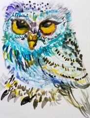 Elegant cute owl for any design, hand painted