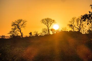 Sunrise in Kruger National Park