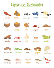 Set of 25 different culinary species and condiments in cartoon style. Spanish names.