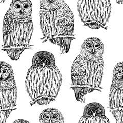 Owl sketch seamless pattern. Hand drawn vector illustration.