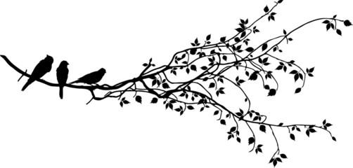 Ast mit Vögel Silhouette Wall mural
