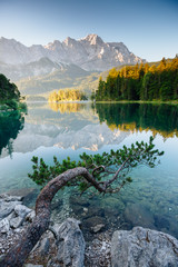 Wall Mural - A look at the famous lake Eibsee in sunligth.
