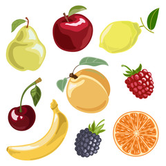 The fruit set. Vector illustration in cartoon style.