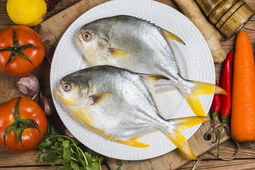 Golden pomrfet fish