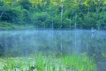 朝霧立つ乗鞍まいめの池
