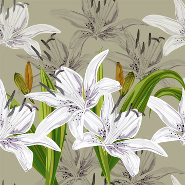 Floral seamless pattern,Lily flowers on green background