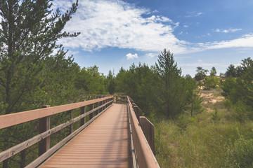 West Beach Trail