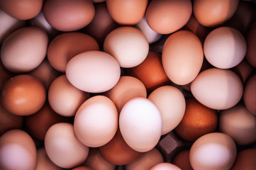 Pile of beautiful fresh eggs at supermarket in Japan