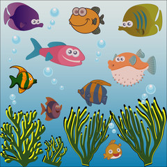 Different fish and seaweed under the sea