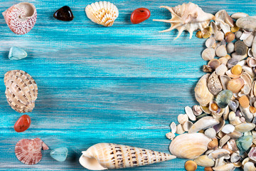 Sea beautiful shells on a wooden blue floor, summer concept