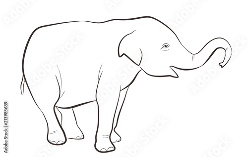 Indian elephant in outline style isolated on white background ...