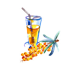 Hand drawn watercolor painting sea buckthorn tea on white background