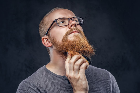 Close up portrait of a redhead bearded male wearing glasses dressed in a gray t-shirt, cares about his beard using a beard brush. Isolated on dark textured background.