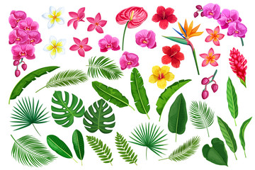 tropical leaves and flowers Wall mural