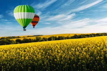 Yellow rape field on blue sky background. Landscape photography
