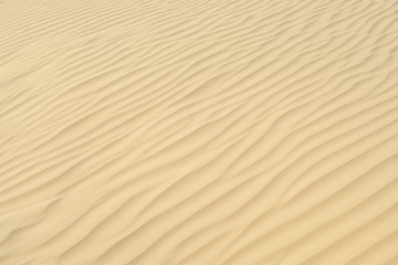 texture of sand on the dunes around the sea