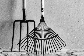 Metal Garden Digging Fork and Lightweight Garden Leaf Rake. Isolated. Copy space for text.