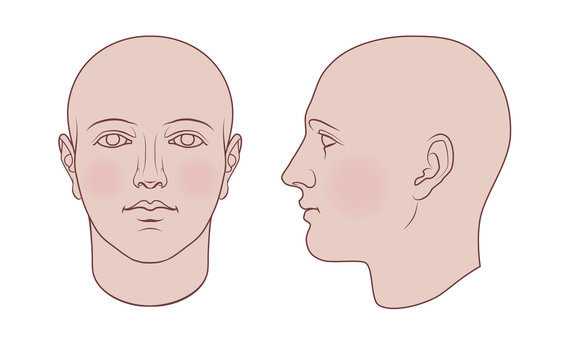 Hand drawn androgynous, gender-neutral human head in face and profile. Flat vector isolated on white background. The drawings can be used independently of each other.