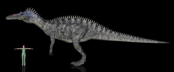 恐竜縮尺図・スコミムス