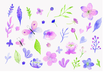 Set of watercolor hand drawn floral elements