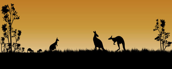 kangaroos and trees as a silhouette in the sunset