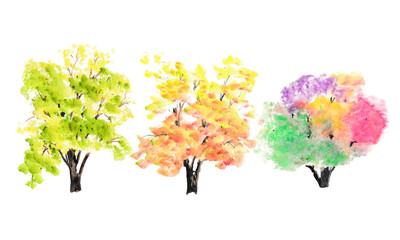 Collection of three trees on white background, watercolor illustrator