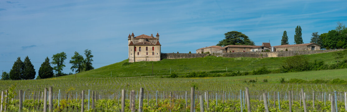 Vineyard and Chateau de Monbadon, Bordeaux Region, France