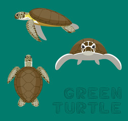 Sea Green Turtle Loggerhead Cartoon Vector Illustration