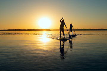Silhouettes of men, friends paddling on a SUP boards