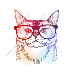 Cute hipster - cat in retro nerdy glasses. Colorful hand drawn illustration, isolated on white. Vector eps10.