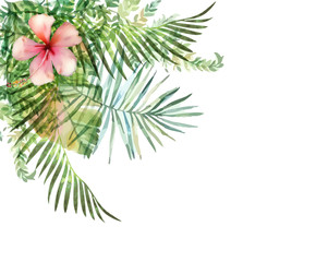 Hand drawn watercolor tropical plants.