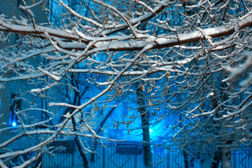 Winter background in night city