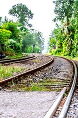 An old winding railway running through the jungle in Sri Lanka.