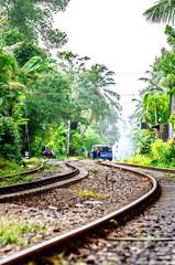 Railway in Sri Lanka, going through the jungle.