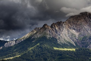 Mountain meadow with Latemar Mountain, stormy mood, Karerpass, Dolomiten, South Tyrol province, Trentino-Alto Adige, Italy, Europe