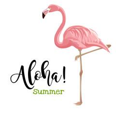 Hello summer vector card. Pink flamingo vector illustration