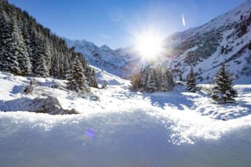 winterwonderland snow white alpin landscape