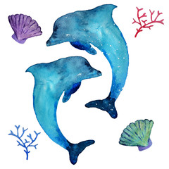 Watercolor dolphins and sea inhabitants,  isolated on a white background. Hand drawn illustration.