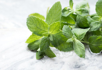 Fresh mint leaves on marble background. Close up