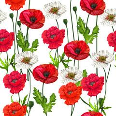 Poppy flowers  seamless on white background,vector illustration