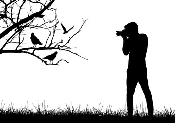 A young man in nature photographing birds sitting on tree branch