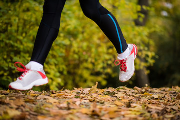 Legs of a jogger woman on dry maple leaves