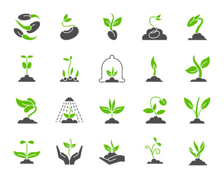 Organic sprout simple color flat icons vector set
