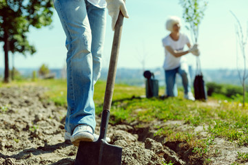 Do it correct. Competent gardener using spade while preparing place for planting young tree