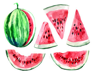 Slices of watermelon. Watercolor illustration