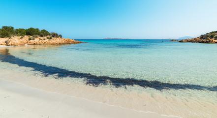 beautiful sea in Spiaggia del Principe