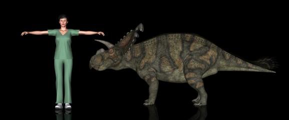 恐竜縮尺図・アルベルタケラトプス
